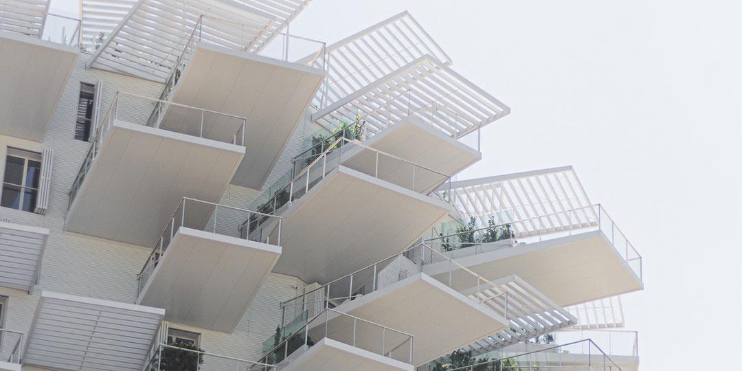architecture unique arbre blanc montpellier